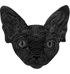 the stylized head of a sphynx cat is an ethnic vector image