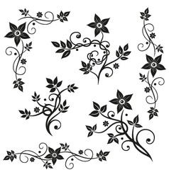 Floral elements ornaments vector image vector image