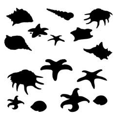 black shape of molluscs shells and starfish vector image vector image