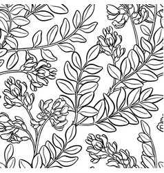 Astragalus seamless pattern vector