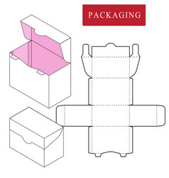 boxpackage template isolated vector image