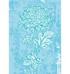 chrysanthemum1 vector image