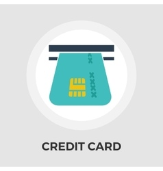 Credit Card Flat Icon vector image