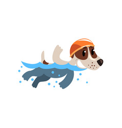 Cute jack russell terrier athlete swimming in pool vector