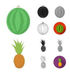 Different fruits cartoonblackflatmonochrome vector