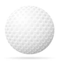 golf 21 vector image