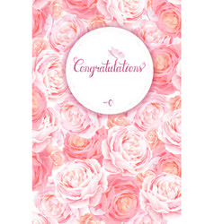 greeting card with pink roses background vector image