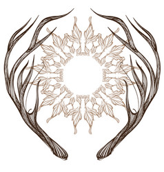 hand drawn deer antlers with decorative floral vector image