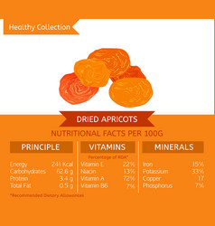 healthy collection fruits vector image