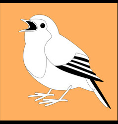 robin bird lining vector image