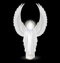 White angel on black vector