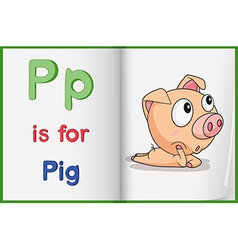 A picture of pig in book vector