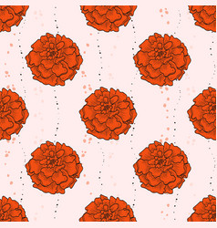 color seamless pattern of marigold flowers vector image