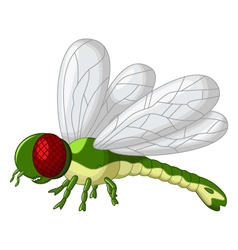 cute green dragonfly cartoon vector image