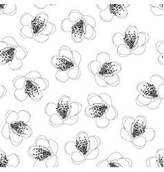 momo peach flower blossom outline on white vector image