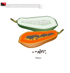 Papaya A Famous Fruit in Papua New Guinea vector