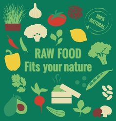 Raw food vector