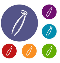 Tooth dentist forceps icons set vector