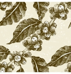 hand drawn seamless pattern with coffee pant vector image vector image