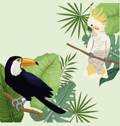 cockatoo and toucan leaves tropical poster vector image vector image