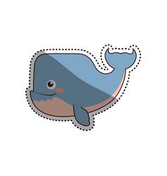 whale cartoon drawing animal vector image