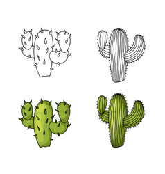 cactus hand drawing and colored to natural green vector image