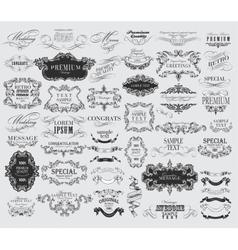 calligraphic floral design elements vector image