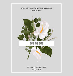 Card with white flower calla lily eucaliphtys vector