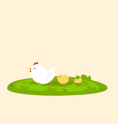 chicken family on grass vector image