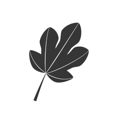 Fig Leaf Icon vector image