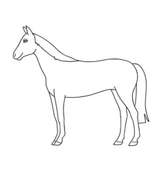 horseanimals single icon in outline style vector image