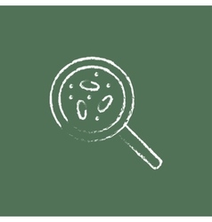 Microorganisms under magnifier icon drawn in chalk vector image
