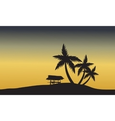 palm trees sunset golden of silhouette vector image