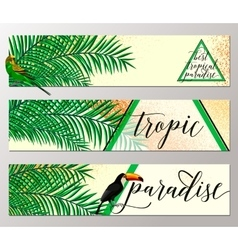 tropical paradise banner vector image