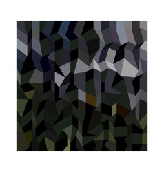 Camouflage Abstract Low Polygon Background vector