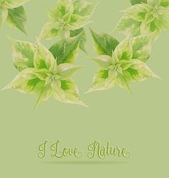 Green leaf on green backgroundlove nature concept vector image