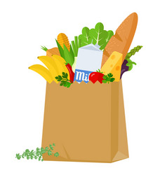 grocery shopping bag vector image