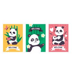 panda bearcat chinese bear with bamboo vector image