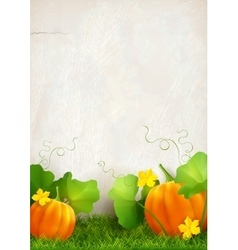 Pumpkin Leaves Grass vector