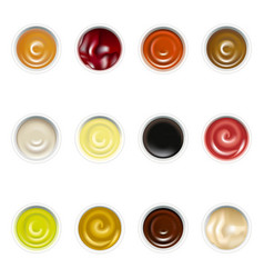 realistic detailed sauces in plate set top view vector image