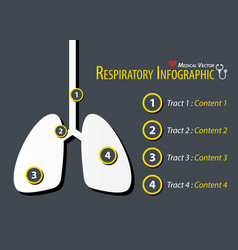 respiratory infographic flat design vector image