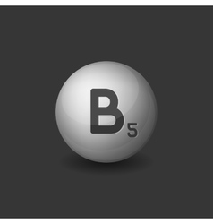 Vitamin B5 Silver Glossy Sphere Icon on Dark vector image vector image