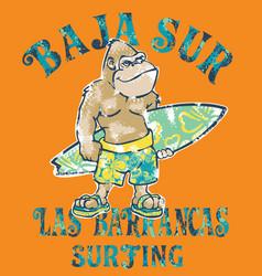 baja sur cute gorilla surfer vector image