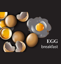 egg realistic on black background vector image
