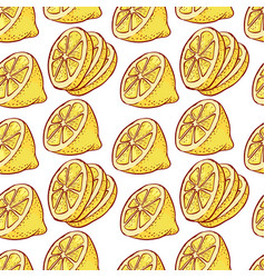 lemon citrous slices seamless pattern vector image