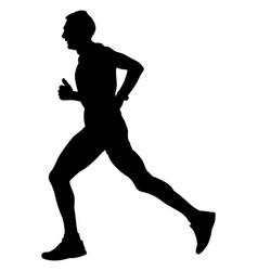 male athlete runner vector image