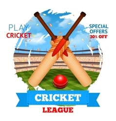 Cricket Stadium vector image