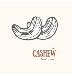 Cashew card hand draw sketch vector