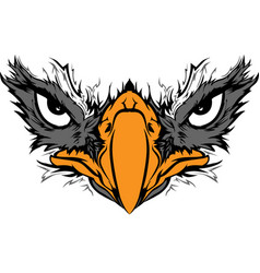 eagle eyes vector image