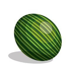 icon watermelon fruit design vector image